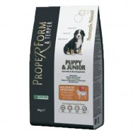 Proper Form and Temper Puppy Molossoidi 20 kg + Castron Smarty - antiderapant - 2200ml